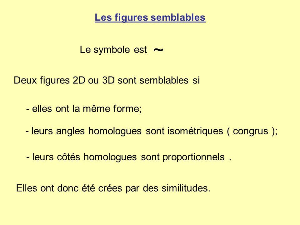 Les figures semblables Deux figures 2D ou 3D sont semblables si - leurs côtés homologues sont proportionnels. ~ - leurs angles homologues sont isométr