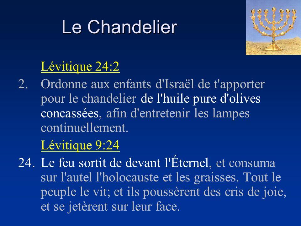 Le Chandelier Lévitique 24:2 2.Ordonne aux enfants d'Israël de t'apporter pour le chandelier de l'huile pure d'olives concassées, afin d'entretenir le