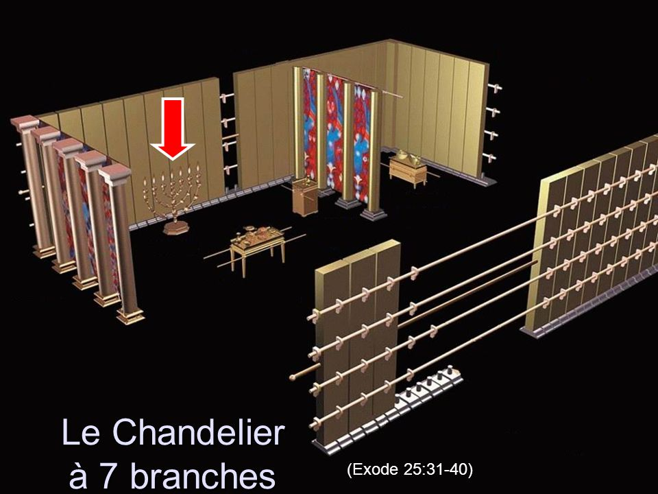 Le Chandelier à 7 branches (Exode 25:31-40)