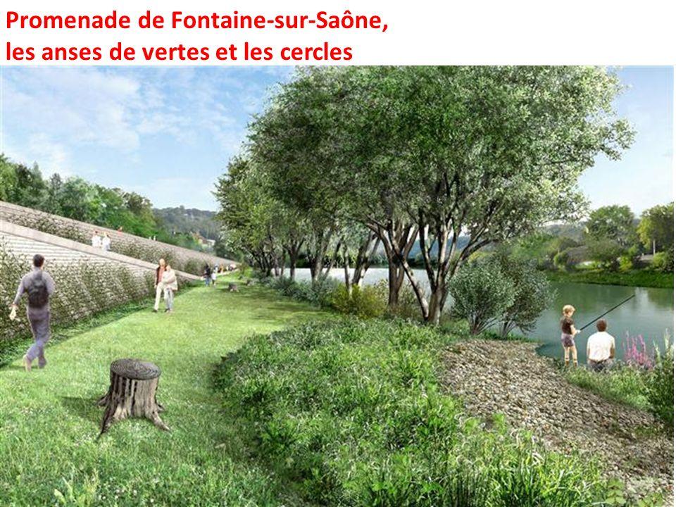 Promenade de Fontaine-sur-Saône, les anses de vertes et les cercles