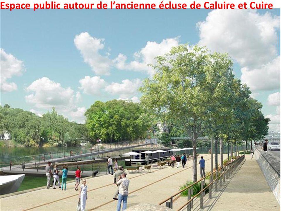 Promenade de Fontaine-sur-Saône, les gradins engazonnés