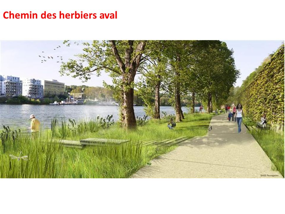Chemin des herbiers aval
