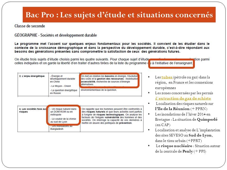 Bac Pro : Les sujets détude et situations concernés Les tubes (pétrole ou gaz) dans la région, en France et les connexions européennestubes Les zones