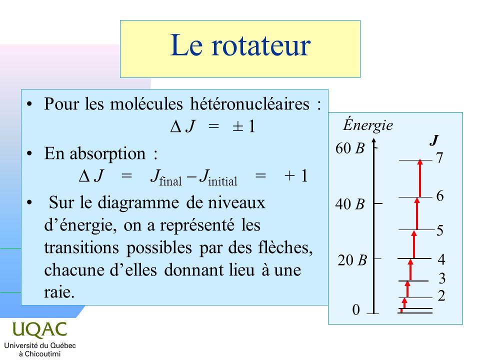 Le rotateur Pour les molécules hétéronucléaires : J = ± 1 En absorption : J = J final J initial = + 1 Sur le diagramme de niveaux dénergie, on a représenté les transitions possibles par des flèches, chacune delles donnant lieu à une raie.