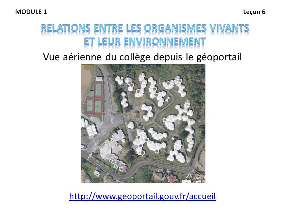 Vue aérienne du collège depuis le géoportail http://www.geoportail.gouv.fr/accueil MODULE 1Leçon 6