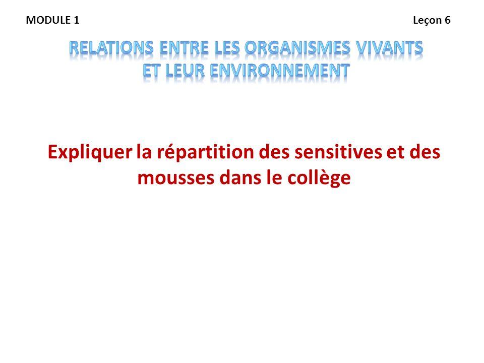 MODULE 1Leçon 6 Expliquer la répartition des sensitives et des mousses dans le collège
