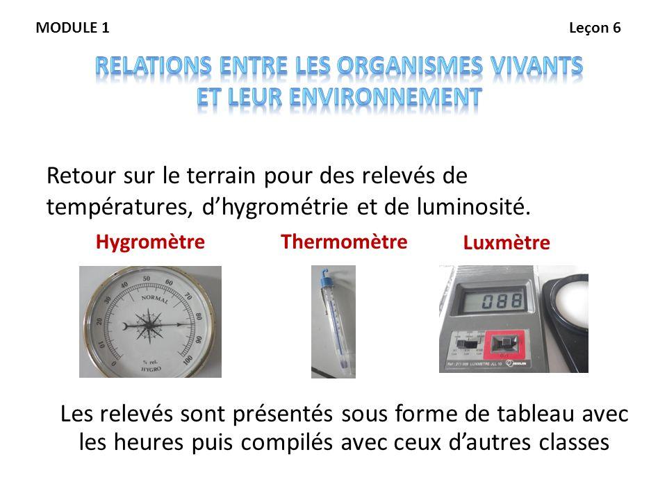 HygromètreThermomètre Luxmètre Retour sur le terrain pour des relevés de températures, dhygrométrie et de luminosité. Les relevés sont présentés sous