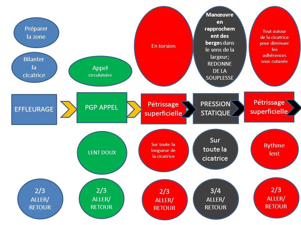 EFFLEURAGE 2/3 ALLER/ RETOUR Bilanter la cicatrice PGP APPEL 2/3 ALLER/ RETOUR Appel circulatoire Préparer la zone Pétrissage superficielle 2/3 ALLER/
