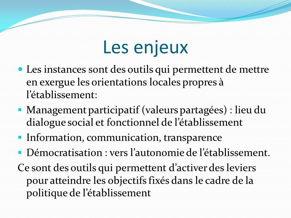 Les enjeux Les instances sont des outils qui permettent de mettre en exergue les orientations locales propres à létablissement: Management participati
