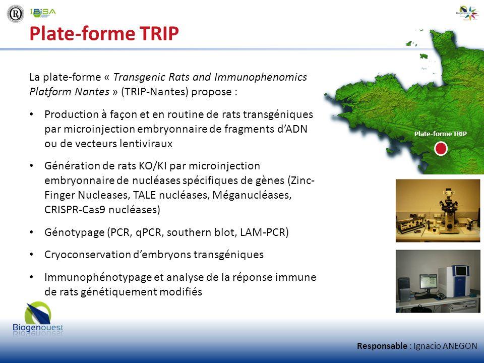 Plate-forme TRIP La plate-forme « Transgenic Rats and Immunophenomics Platform Nantes » (TRIP-Nantes) propose : Production à façon et en routine de ra