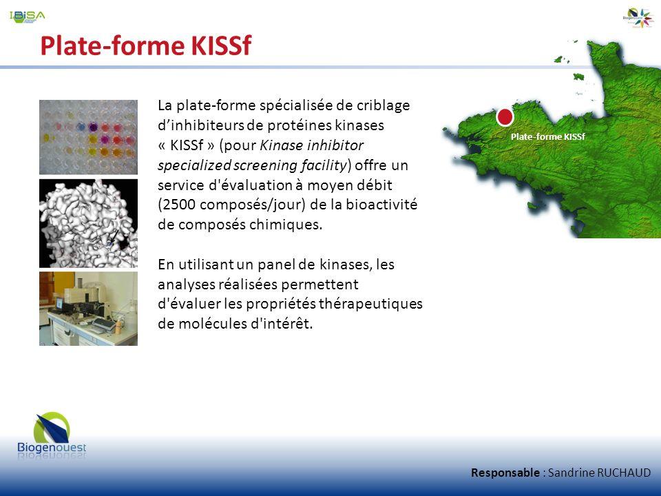Plate-forme KISSf La plate-forme spécialisée de criblage dinhibiteurs de protéines kinases « KISSf » (pour Kinase inhibitor specialized screening faci