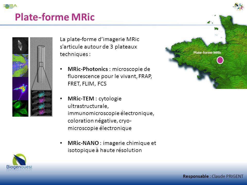 Plate-forme MRic La plate-forme dimagerie MRic s'articule autour de 3 plateaux techniques : MRic-Photonics : microscopie de fluorescence pour le vivan