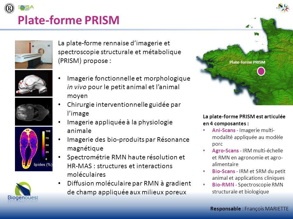 Plate-forme PRISM La plate-forme rennaise dimagerie et spectroscopie structurale et métabolique (PRISM) propose : Imagerie fonctionnelle et morphologi
