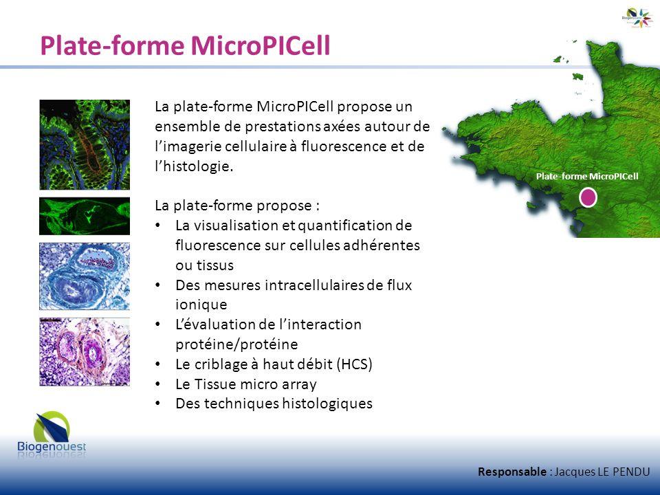 Plate-forme MicroPICell La plate-forme MicroPICell propose un ensemble de prestations axées autour de limagerie cellulaire à fluorescence et de lhisto