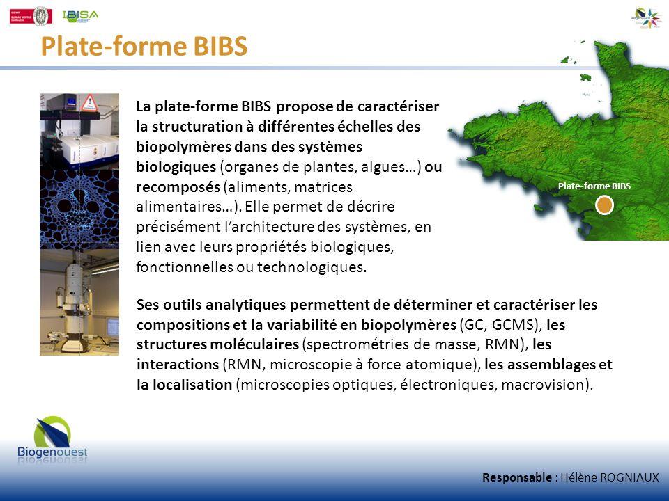 Plate-forme BIBS La plate-forme BIBS propose de caractériser la structuration à différentes échelles des biopolymères dans des systèmes biologiques (o