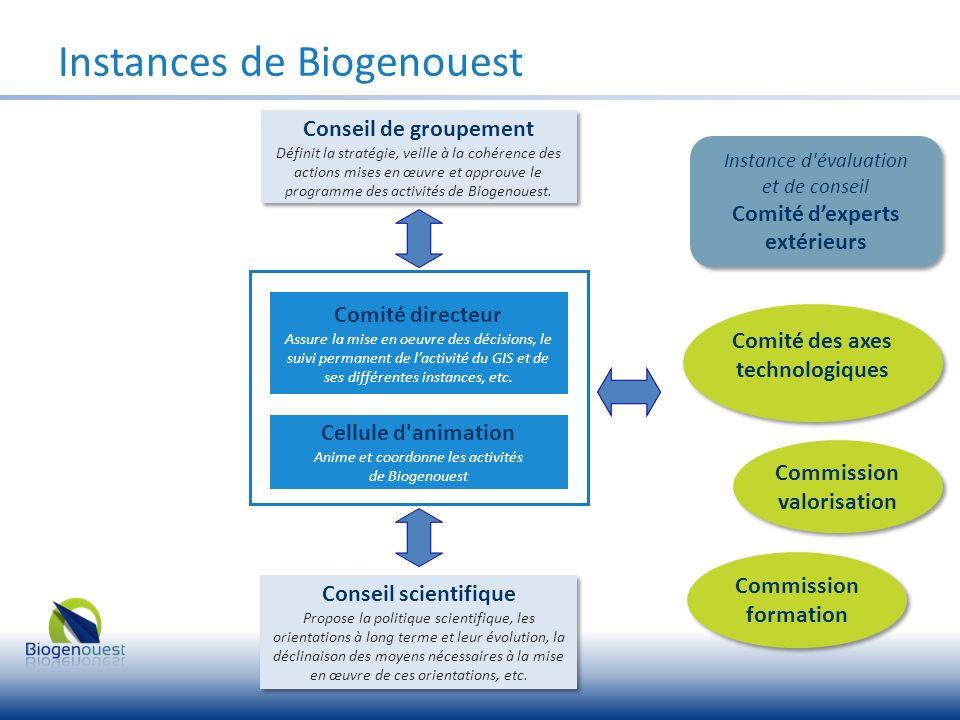 Instances de Biogenouest Comité directeur Assure la mise en oeuvre des décisions, le suivi permanent de lactivité du GIS et de ses différentes instanc