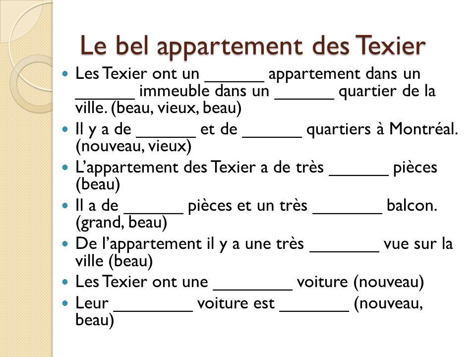 Le bel appartement des Texier Les Texier ont un ______ appartement dans un ______ immeuble dans un ______ quartier de la ville.