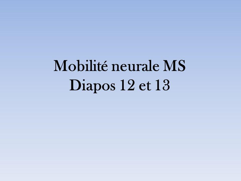Mobilité neurale MS Diapos 12 et 13