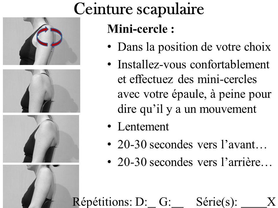 Mini-cercle : Dans la position de votre choix Installez-vous confortablement et effectuez des mini-cercles avec votre épaule, à peine pour dire quil y a un mouvement Lentement 20-30 secondes vers lavant… 20-30 secondes vers larrière… Ceinture scapulaire Répétitions: D: G: Série(s): X