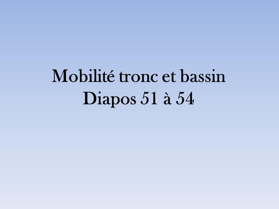 Mobilité tronc et bassin Diapos 51 à 54