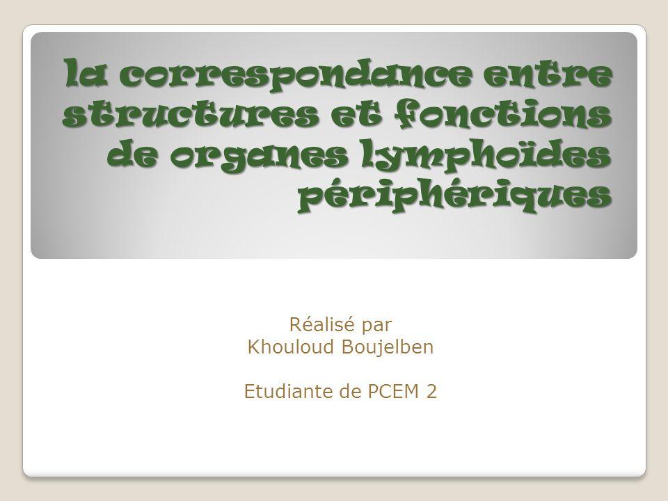 la correspondance entre structures et fonctions de organes lymphoïdes périphériques Réalisé par Khouloud Boujelben Etudiante de PCEM 2