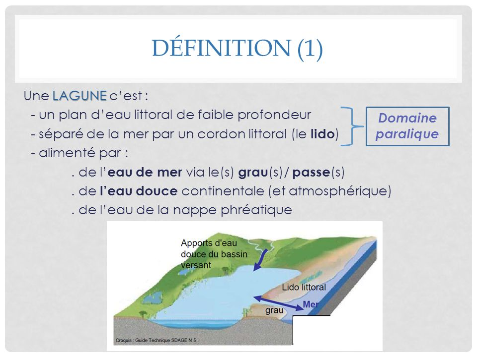LAGUNE Une LAGUNE cest : - un plan deau littoral de faible profondeur - séparé de la mer par un cordon littoral (le lido ) - alimenté par :. de l eau