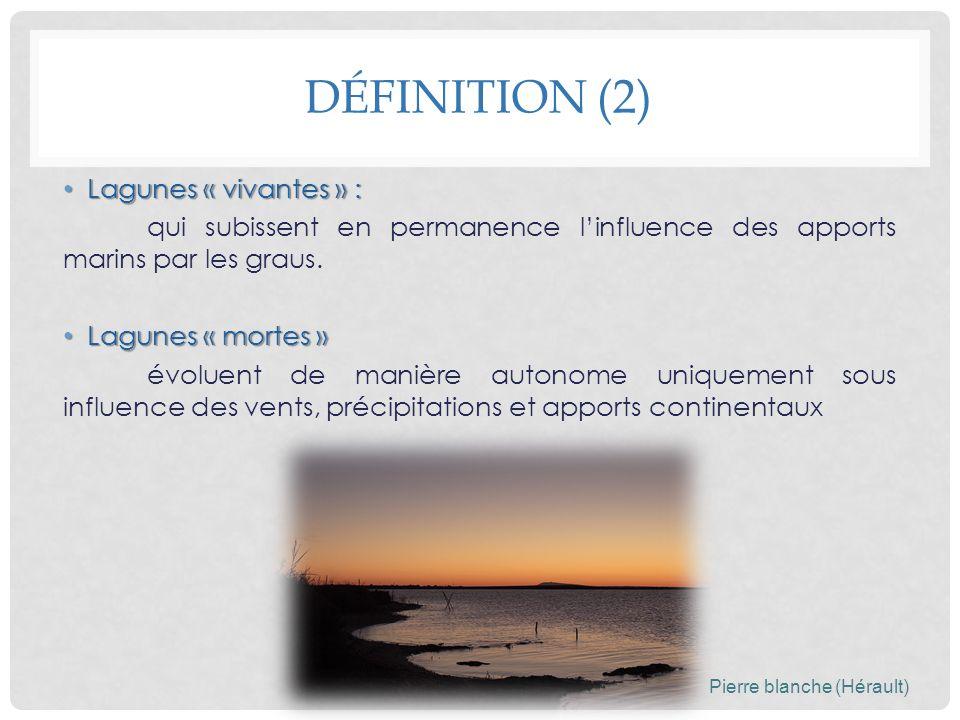 DÉFINITION (2) Lagunes « vivantes » : Lagunes « vivantes » : qui subissent en permanence linfluence des apports marins par les graus. Lagunes « mortes
