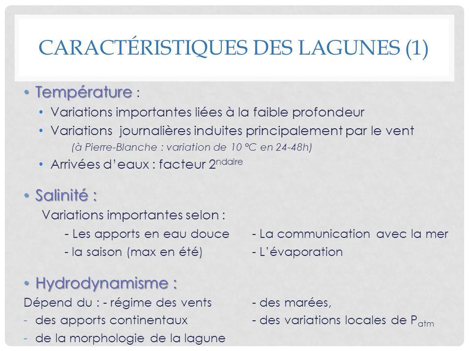 CARACTÉRISTIQUES DES LAGUNES (1) Température Température : Variations importantes liées à la faible profondeur Variations journalières induites princi