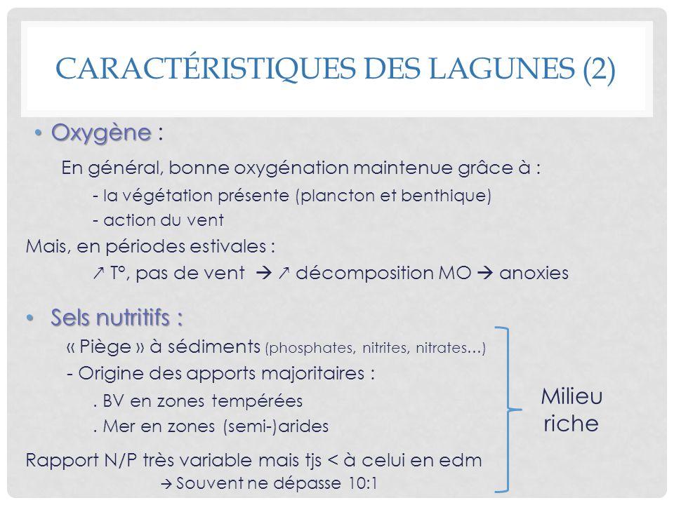 CARACTÉRISTIQUES DES LAGUNES (2) Oxygène Oxygène : En général, bonne oxygénation maintenue grâce à : - la végétation présente (plancton et benthique)