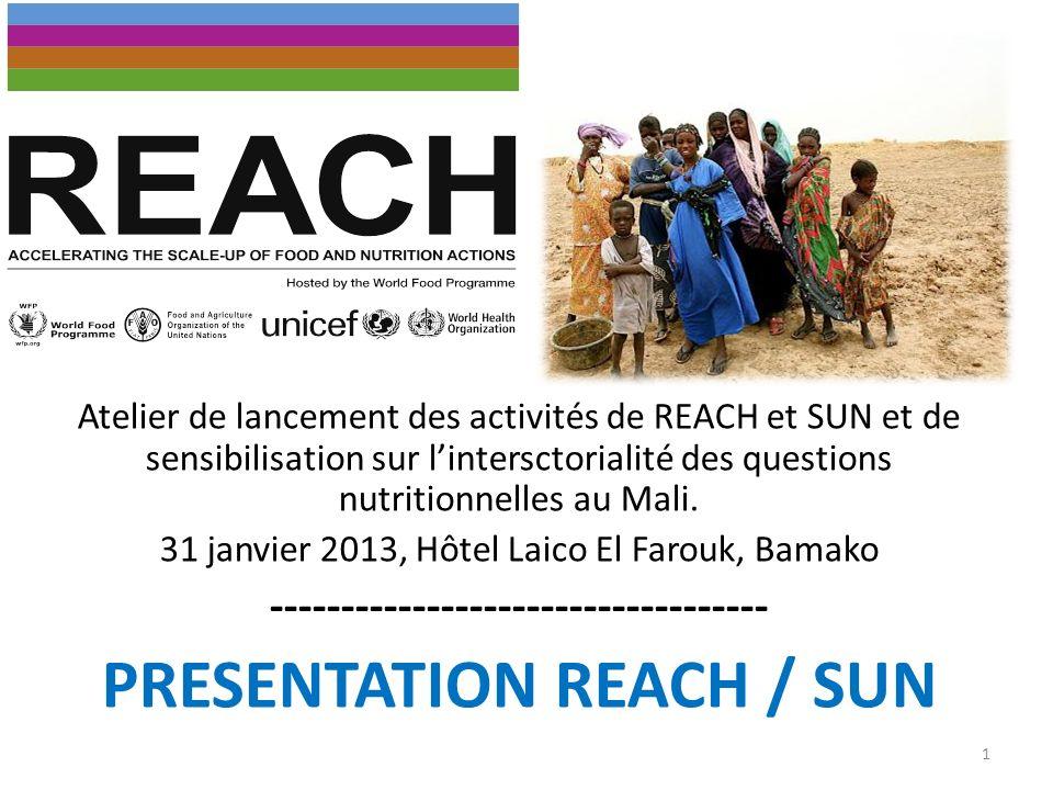 Atelier de lancement des activités de REACH et SUN et de sensibilisation sur lintersctorialité des questions nutritionnelles au Mali. 31 janvier 2013,