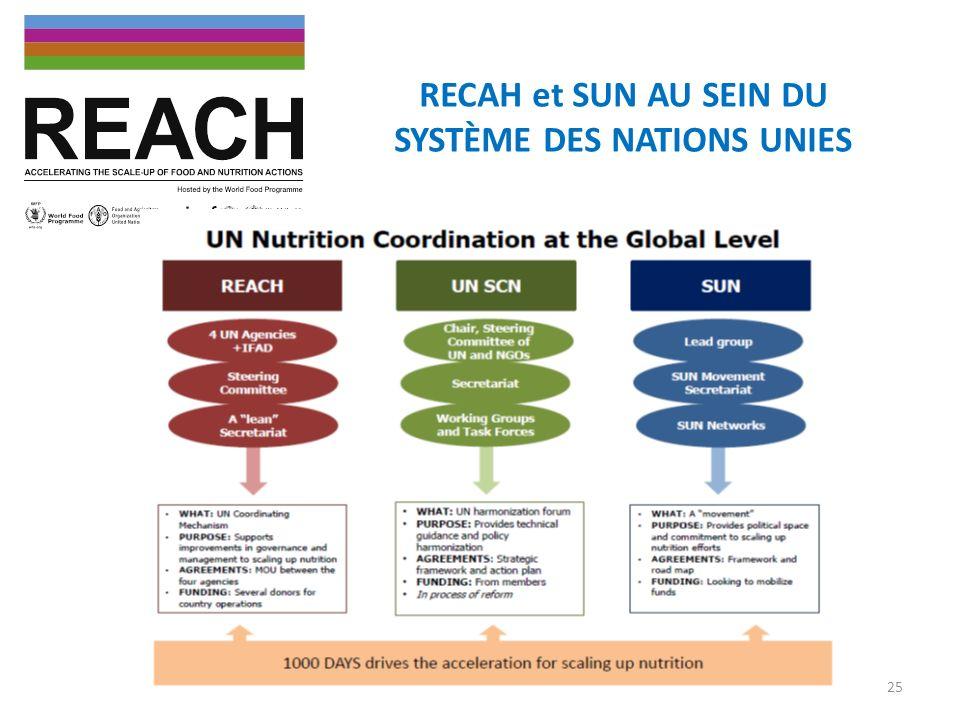 RECAH et SUN AU SEIN DU SYSTÈME DES NATIONS UNIES 25