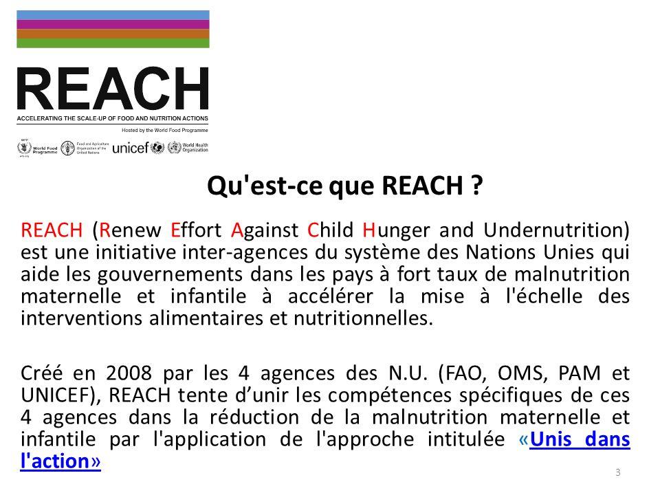REACH est une approche pilotée au niveau pays pour intensifier les interventions éprouvées et efficaces sur la malnutrition des enfants et des femmes par le biais du partenariat et de l action coordonnée des agences des Nations Unies, les Partenaires au développement, la Société civile et le Secteur privé, sous la direction des Gouvernements.