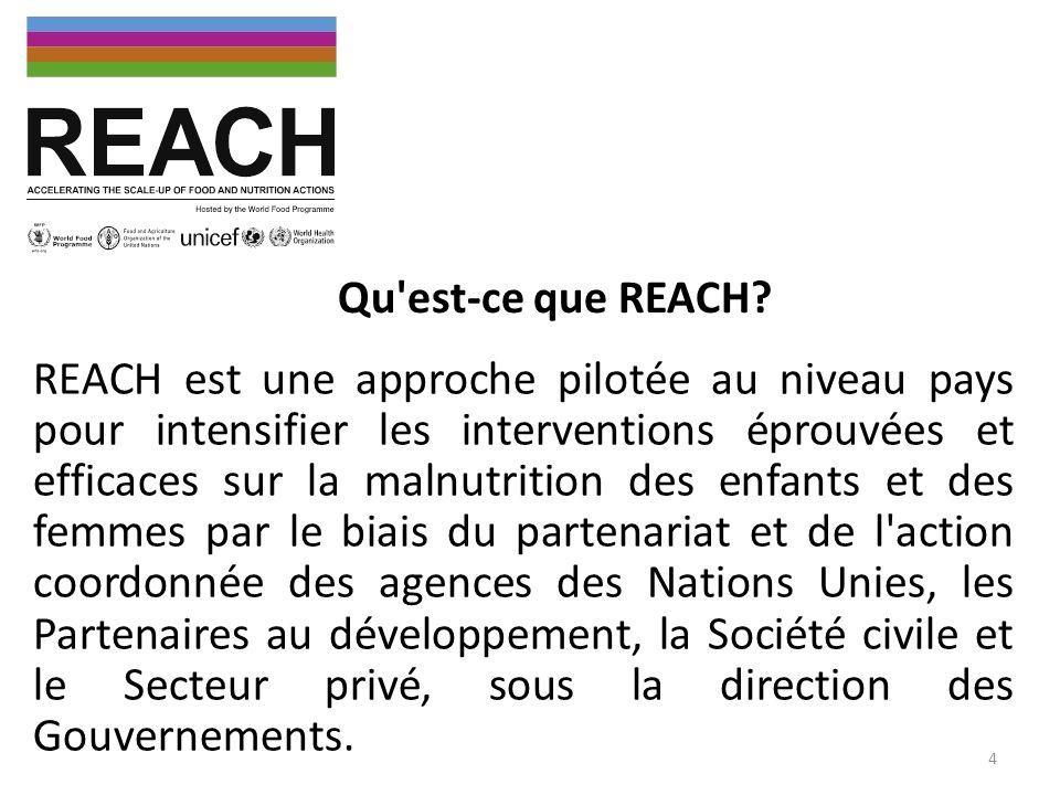 Activités REACH Mali en 2013 Réaliser une analyse détaillée de la situation nutritionnelle au Mali en intégrant lestimation des déterminants de la malnutrition selon les régions, la cartographie des acteurs et lévaluation de la couverture des interventions, Identifier les actions nutritionnelles à haut impact à mettre à léchelle, Veiller à l intégration des actions de nutrition comme une priorité dans les plans de travail annuels des ministères / secteurs liés à la nutrition, Appuyer l élaboration d un plan d action multisectoriel national sur la nutrition, Appuyer la conception dun système national multisectoriel dinformation sur la nutrition, Renforcer les capacités humaines et institutionnelles de nutrition à tous les niveaux.