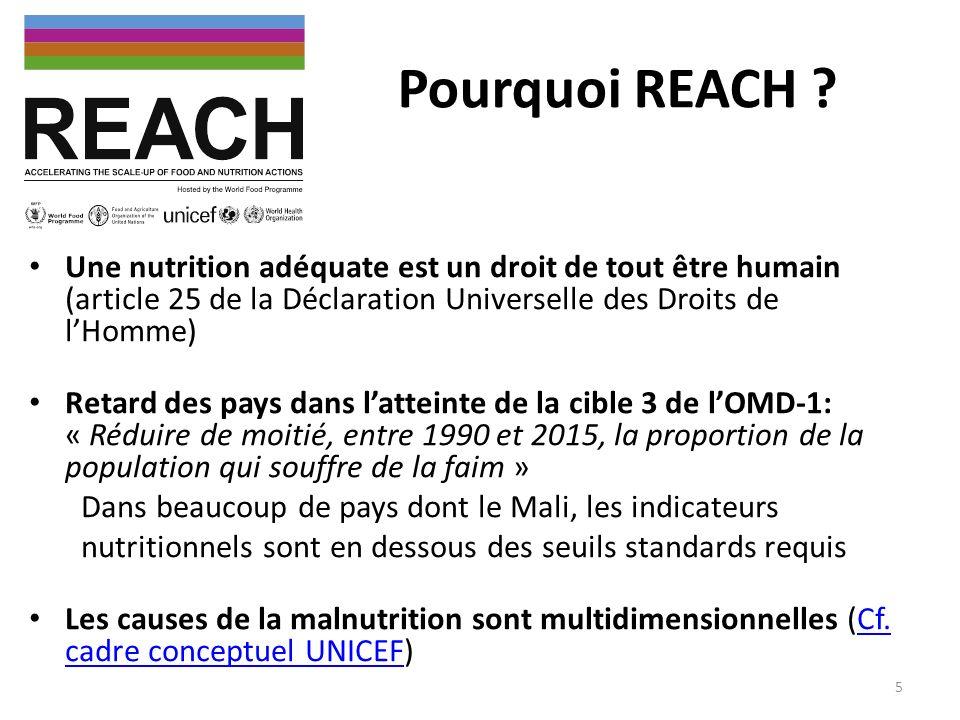 Pourquoi REACH ? Une nutrition adéquate est un droit de tout être humain (article 25 de la Déclaration Universelle des Droits de lHomme) Retard des pa