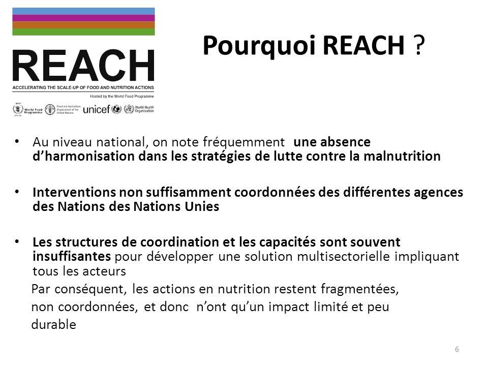 Pourquoi REACH ? Au niveau national, on note fréquemment une absence dharmonisation dans les stratégies de lutte contre la malnutrition Interventions