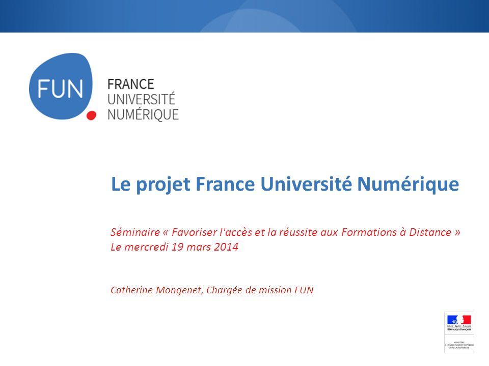 Le projet France Université Numérique Séminaire « Favoriser l'accès et la réussite aux Formations à Distance » Le mercredi 19 mars 2014 Catherine Mong