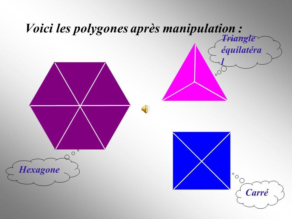 Quels polygones avons – nous construits .Un hexagone, un triangle équilatéral et un carré.