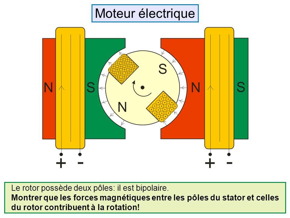 Le rotor possède deux pôles: il est bipolaire. Montrer que les forces magnétiques entre les pôles du stator et celles du rotor contribuent à la rotati