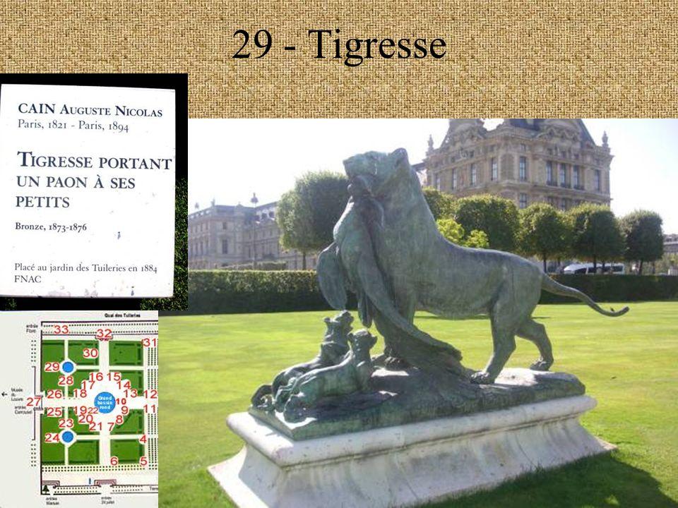 29 - Tigresse