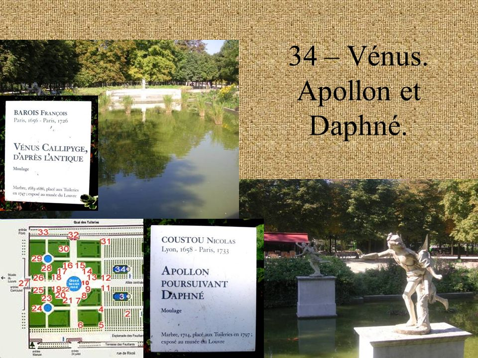 34 – Vénus. Apollon et Daphné.