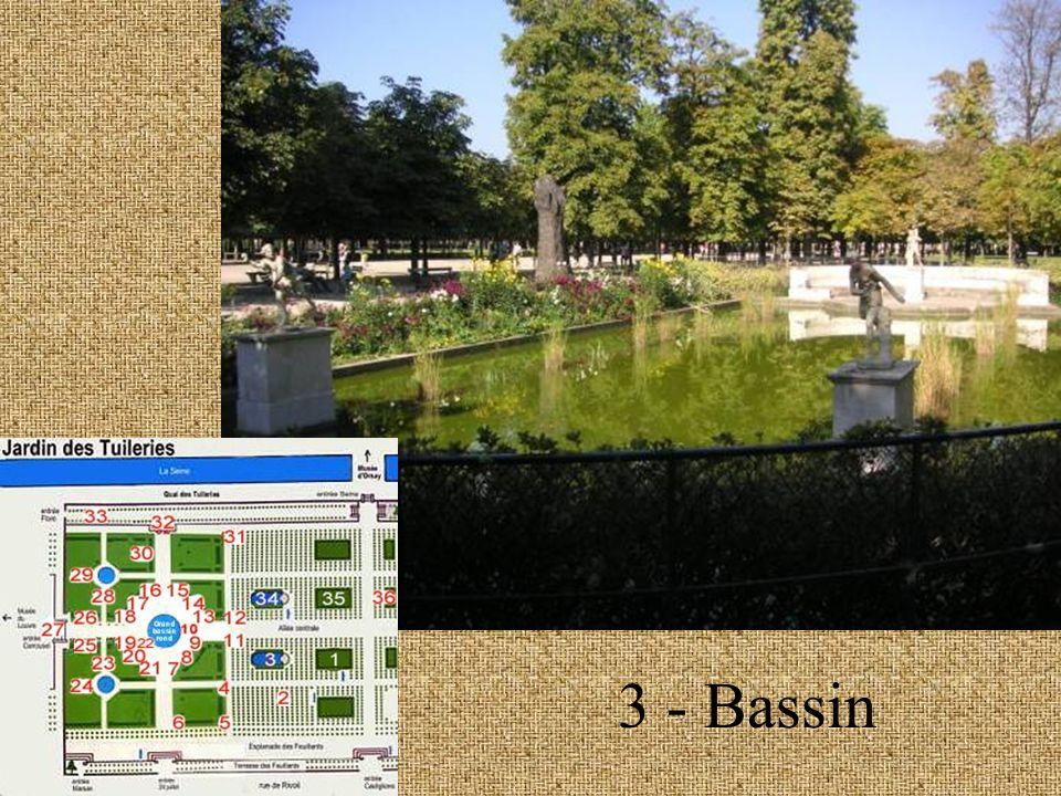 3 – Bassin détail
