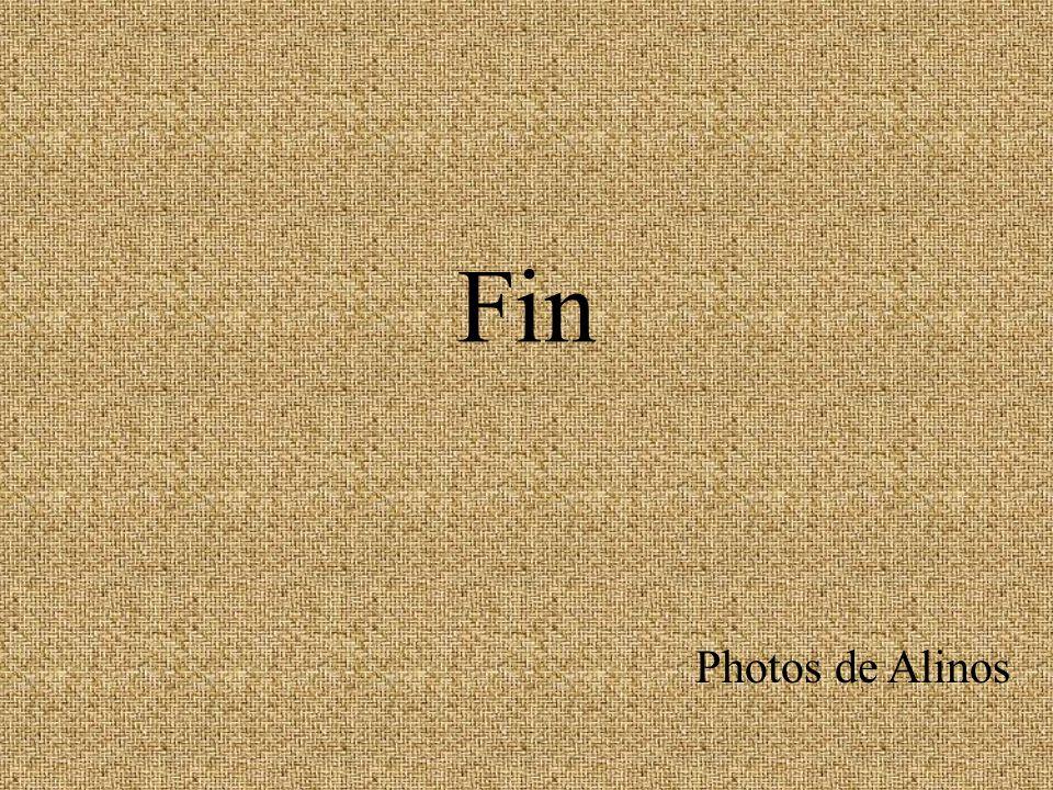 Fin Photos de Alinos