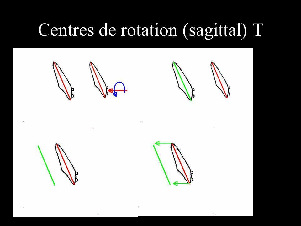 Centres de rotation (sagittal) T position du centre de rotation T.