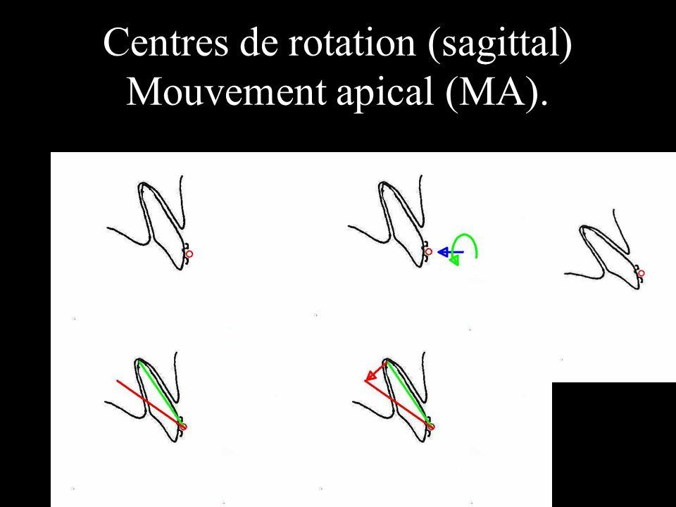 Centres de rotation (sagittal) Mouvement apical (MA).