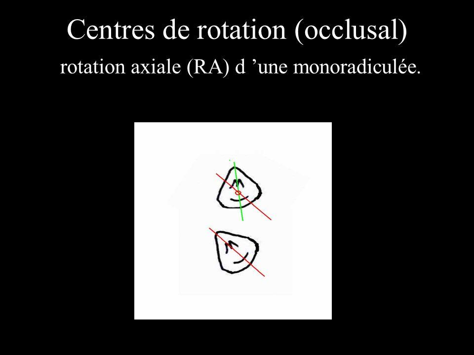 Centres de rotation (occlusal) rotation axiale (RA) d une monoradiculée.