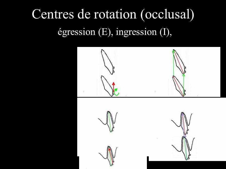 Centres de rotation (occlusal) égression (E), ingression (I),