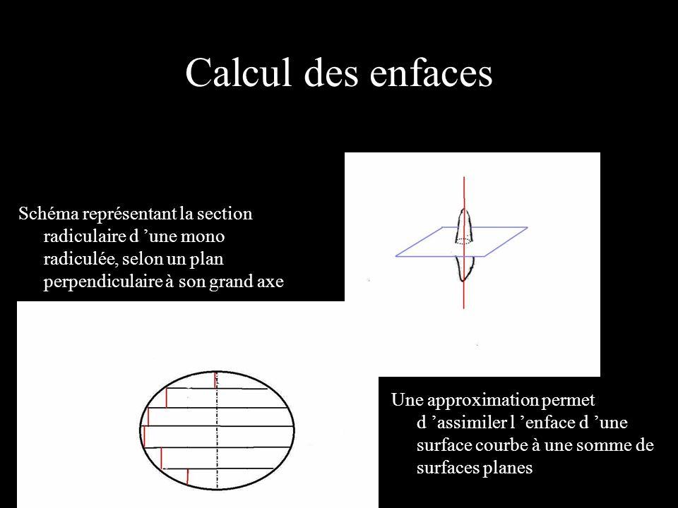 Calcul des enfaces Schéma représentant la section radiculaire d une mono radiculée, selon un plan perpendiculaire à son grand axe Une approximation pe