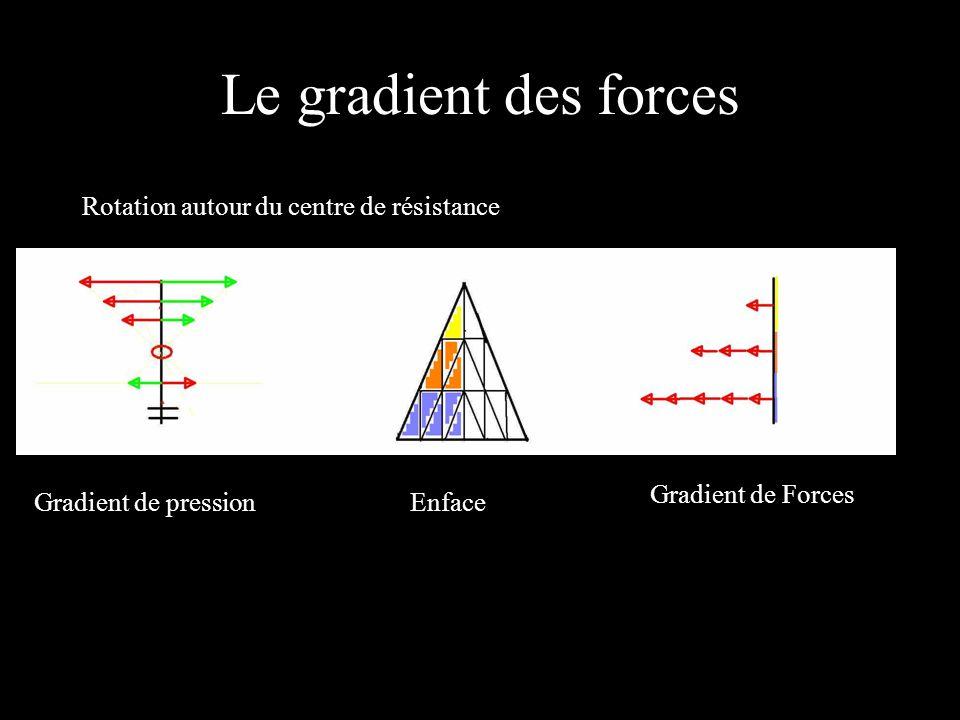 Le gradient des forces Rotation autour du centre de résistance Gradient de pressionEnface Gradient de Forces