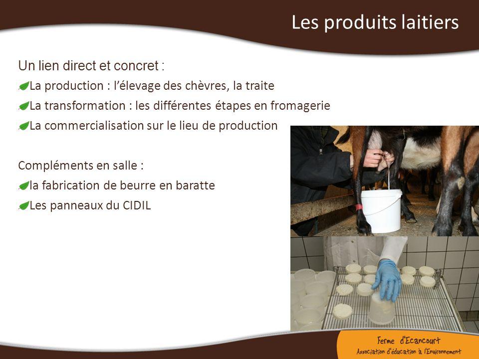 Les produits laitiers Un lien direct et concret : La production : lélevage des chèvres, la traite La transformation : les différentes étapes en fromag