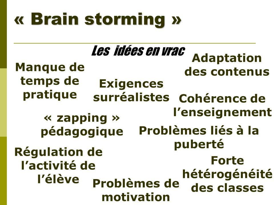 « Brain storming » Les idées en vrac Cohérence de lenseignement Problèmes liés à la puberté « zapping » pédagogique Adaptation des contenus Problèmes